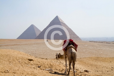 egypt pyramids in cairo